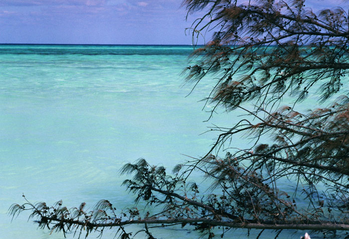 Emerald Blue - Cayo Levisa, Cuba 2011